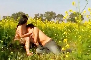 admirable meadow pair fuck